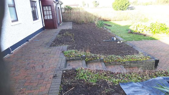 Restoration of Existing Raised Beds